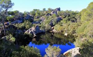 'Sa Bassa Verda' de Menorca
