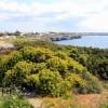 Menorca, abierto para los negocios y placer