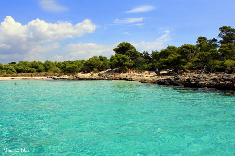 Menorca Blue | Son Saura