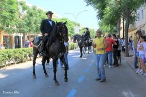 Purebred Horses Menorca