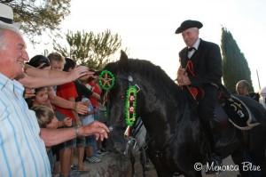 Pure bred Menorcan Horses