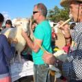 Drying the Lamb & Fabioler